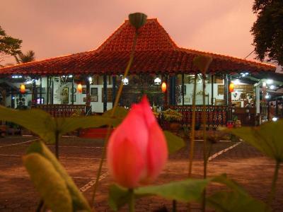 Suasana Malam Hari di Hotel Taman Teratai- Puncak Sangat Anggun, Dilengkapi Dengan Lampu- Lampu Hias